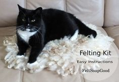 Cat rug making Felting KIT and instructuctons + video for making curly rug for a pet DIY Craft set New Zealand wool from FeltSoapGood