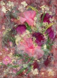 Pink Splendor - Pressed Flower Art - Shelley Xie