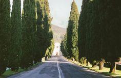 i diari della lambretta: 7 reasons to love Vittorio Veneto {plus: moving in!}