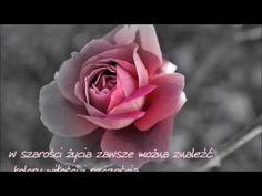 Marisa Miller, Folk, Youtube, Flowers, Plants, Magick, Popular, Fork, Flora
