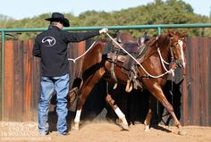 Training Tip: Horse Playing With The Bit