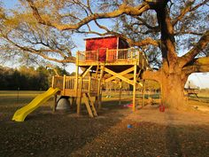 """coolest treehouse ever! Fairly simple plan. Lower platform with slide and rockwall. Top platform with """"house"""" and zipline. No support needed from tree."""
