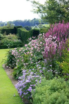 beautiful English garden with purples by colorcrazy. yew hedge wall looks so stately. Small Gardens, Outdoor Gardens, Garden Cottage, Home And Garden, English Garden Design, British Garden, Exterior, Garden Borders, Garden Planters
