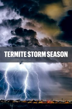 It's just about storm season here in the River Valley, but another storm you may not be aware of is termite season. Although these guys are tiny, they are mighty because they can cause some major damage to your home. Learn more: www.goterminator.com/blog/it-s-termite-storm-season #TerminatorTPC #TermiteSeason #Termites #TermiteControl Termite Pest Control, Severe Storms, Seasons, River, Guys, Blog, Seasons Of The Year, Blogging, Sons