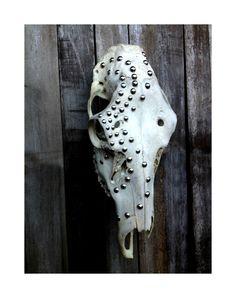 Southwestern Decor Embellished Cow Skull Real by MenasRusticDecor, $85.00
