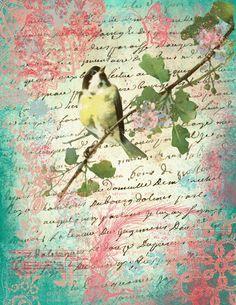 Junk Journal, Shabby Chic, Garden Birds, Printable Vintage, Printables, Scrapbook Kit, Digital, Journals, Painting