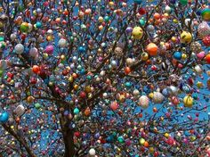Easter Egg Tree with eggs. German retiree, Volker Kraft, decorates it annually. A joyous sight. Hoppy Easter, Easter Eggs, Favorite Holiday, Holiday Fun, Here Comes Peter Cottontail, Easter Tree, Egg Decorating, Bellisima, Color Splash