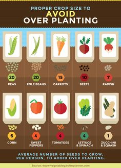 How much to plant per person? Backyard Vegetable Gardens, Veg Garden, Vegetable Garden Design, Garden Types, Easy Garden, Garden Plants, Garden Ideas, Vegetable Ideas, Fence Ideas