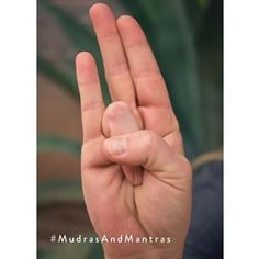 Day 10 of Surya mudra: Surya means sun. This mudra correlates to the thyroid gland, reduces cholesterol in the body,  helps in reducing weight, reduces anxiety, and can correct or relieve indigestion. #holyyoga #mudra