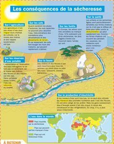 Fiche exposés : Les conséquences de la sécheresse