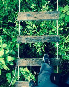 Wandelen over de hangbruggen in Monteverde  #monteverde #costarica #travelkid #travelwithkids #intothewild #nature #natgeo #skywalk #bridge #forest #cloudforest #costarica #puravida #santaelena #instatravel #instapassport #travel #travelphotography #wanderlust #adventure #jungle