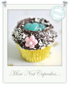 Mini gluten free berry chocolate nest cupcakes