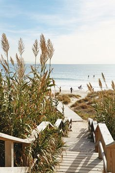 The best things to do in Cadiz, Tarifa & Costa de la Luz in Andalucía, Spain, including what to see in Jerez, Vejer and Medina Andalucia Spain, Beaches In The World, Cadiz, Travel Images, Spain Travel, Strand, Trip Planning, Places To See, Travel Inspiration