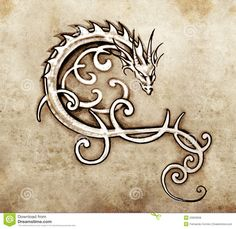 Image from http://thumbs.dreamstime.com/z/sketch-tattoo-art-decorative-dragon-23923628.jpg.