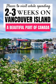 If you plan to going to Canada, make sure you have enough time to visit Vancouver Island! This beautiful island, filled with must-dos and hidden gems, has something for everyone. Spot bear or… Vancouver Island, Visit Vancouver, Quebec, Canada Travel, Columbia Travel, British Columbia, Montreal, Cool Places To Visit, Places To Go