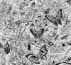 11-Year-Old Child Prodigy Creates Unbelievably Intricate Nature-Inspired... en eAnswers