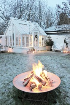 Winter in garden