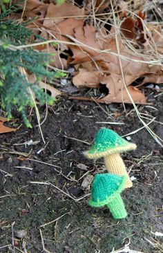 Bromeleighad: Knitting and Nature: 52 Forms of Fungi || #8