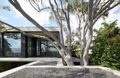 Hopetoun Avenue by B.E Architecture (6)