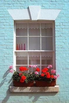 1 parte de látex VISTA turquesa y 4 de blanco Window box with geraniums