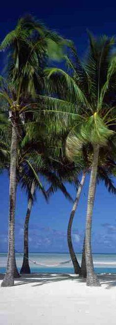 DC400 Island Dreams | Greatbigphotos.com @ http://www.greatbigphotos.com/?product=dc400-island-dreams