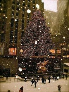 My first time ice skating was at Rockefeller Center in NYC. I love the Christmas Tree it always goes up the Wednesday after Thanksgiving.