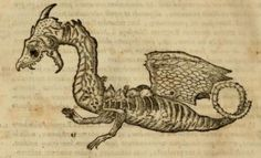 Johannes Faber 1651 Decaying Dragon A decaying dragon is shown on p. 817 of Dr. Francisco Hernández' landmark book Rerum Medicarum Novae Hispaniae Thesaurus (published in 1651).