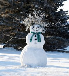 All natural hairdo adds interest to this snowman. – title Bad Hair Day – by Mike… – Winterbilder I Love Snow, I Love Winter, Winter Fun, Winter Time, Winter Christmas, Prim Christmas, Father Christmas, Winter Green, Country Christmas
