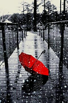 < rainy days are the best days. Rainy Day Photography, Splash Photography, Red And Grey, Black And White, Flowers Black Background, Acrilic Paintings, Forever Red, Umbrella Art, Fall Wallpaper