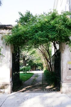 Garden Path Entryway in Charleston, South Carolina.