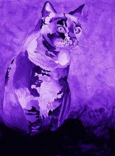 #ruby_zakaria #ruby_zakaria_photography #cat #catpainting #catsketch #watercolors #inkpainting #gouache #greycat #purple #fineart #sketchesbyme #myart #myartwork #gallery #egyptart #egypt #egyptiancat #watercolour #watercolor #رسمتي #رسمى #قطة #رسم_حيوانات #فنون_تشكيلية #سكيتش #رسم