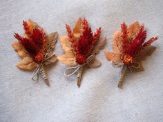 Autumn dried wheat boutonniere ,set -6 , groomsman wedding boutonniers ,rustic groom wedding decor ,vintage country ,woodland boutonniere