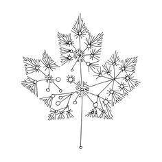 Canadian Maple Leaf Colouring Page with Abstract Drawing in Mind Form by Donald Lee Animal Outline, Leaf Outline, Elegant Tattoos, Feminine Tattoos, Leaf Coloring Page, Coloring Pages, Time Tattoos, Small Tattoos, Maple Seed Tattoo