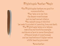 New version of goose feather magic please check your local and new version of nightingale feather magic please check your local and federal guidelines for feather fandeluxe Images