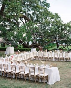 A Fun Layout   Romantic Florida Garden Wedding