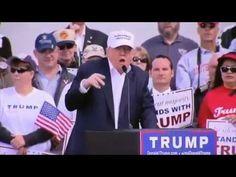 O mínimo que você precisa saber sobre o vexame da imprensa antes, durante e após a vitória de Trump | Felipe Moura Brasil | VEJA.com