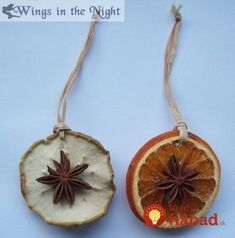 Wings in the Night Alternative Gothic & Pagan UK Shop - Apple & Orange Slice ornaments Yule – Winter Solstice – Pagan – Pinned by The Mystic's Empo - Natural Christmas, Winter Christmas, Winter Holidays, Pagan Christmas Tree, Xmas, Christmas Ornament, Yule Crafts, Holiday Crafts, Holiday Fun