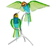 Bee-eaters, Peridot - Figurinen - Swarovski Online Shop