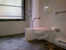 We have added two more grab bars to improve access to the wall mounted toilet which is at a slightly higher height but not quite wheelchair height. A compromise! Wall Mounted Toilet, Grab Bars, Bathrooms, Projects, Toilets, Log Projects, Bathroom, Bath, Bathing