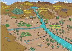 Territorio: extensión de tierra que pertenece a un estado o provincia.