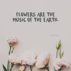 """""""Flowers are the music of the earth.""""⠀  Quotes about flowers"""