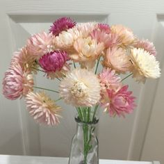ヘリクリサムのドライフラワー、ナチュラルピンク25本です。ワイヤー付きのままお届け致します。自然の物なので、個体差があります。都内大手花材販売店にて購入の良質なドライフラワーです。検索ワードハンドメイド 手作り ドライ 小花 レジン アクセ ウェルカムボ...