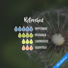 Refreshed - Essential Oil Diffuser Blend : peppermint, petitgrain, lemongrass, grapefruit .. pinterest:  katepisors