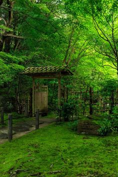 Amazing places to visit when you travel Japan Japanese culture lonelyplanet landscape travel nature adventure holiday scenery discovery destinations TsemRinpoche zenGarden is part of Japanese landscape - Japanese Garden Design, Japanese Landscape, Japanese Architecture, Japanese Gardens, Architecture Courtyard, Modern Gardens, Beautiful Landscapes, Beautiful Gardens, Japan Garden