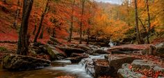 Go In Peace! - Suuctu waterfall... Bursa/ Turkey