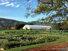12 Things you MUST see and do in the Napa Valley : Walk the hallowed ground of Thomas Keller