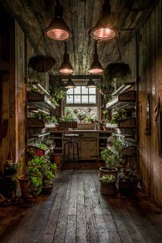 The Potting Shed: A Green Oasis in Alexandria This restaurant in Alexandria, Australia, is a green oasis. Plants adorn every wall and nook while beautiful reclaimed wood furniture makes for a cozy interior.The Potting Shed doesn't only serve amazing food, The Grounds Of Alexandria, Alexandria Sydney, Witch Cottage, Cottage In The Woods, Shed Plans, Barn Plans, Garage Plans, Hanging Plants, Hanging Baskets