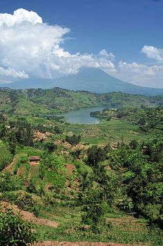 Rwanda, the Land of 1000 Hills. Be there this summer. Gorilla Trekking, Great Lakes Region, Africa Travel, Rwanda Travel, Destinations, Travel Packing, Travel Guide, Holiday Travel, Continents