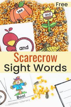 This Scarecrow Sight Word Activity with a sensory bin includes a FREE Printable for Kindergarten and First grades! Makes the perfect fall sensory bin and sight word activity! Learning Sight Words, Sight Word Activities, Sight Word Games, Kindergarten Sensory, Kindergarten Centers, Classroom Activities, Preschool Themes, Fall Sensory Bin, Sensory Bins