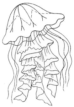 Printable jellyfish coloring page. Free PDF download at
